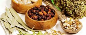 #CulturaLocal / Conoce la mejor fuente de medicina tradicionalmexicana