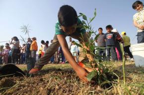 """#Local / Inician """"Campaña de Reforestación 2017"""" para un #Celaya másverde"""