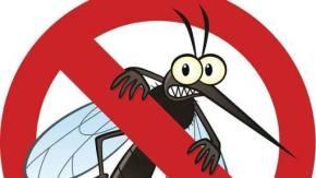 #Local /Secretaría de Salud redobla acciones para exterminar mosquitos enCelaya