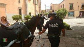 #CaraFeliz / Policía Montada y Unidad Canina cuidan y supervisan Centro yAlameda